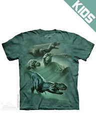 Dinosaur Collage Child's T-Shirt from The Mountain - Child S-XL