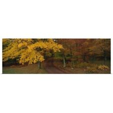 Poster Print Wall Art entitled Road Hickory Run State Park PA
