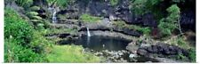 Poster Print Wall Art entitled Pools in a forest, Seven Sacred Pools, Maui,
