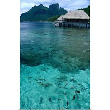 Poster Print Wall Art entitled Bungalows over the waters of Bora Bora Lagoon