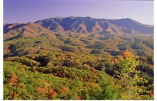 Poster Print Wall Art entitled Great Smoky Mountains National Park, Tennessee,