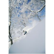 Poster Print Wall Art entitled Downhill Skier