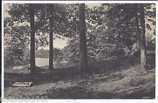 Greetings  trees Park & water  View Indian River Mi Michigan Postcard