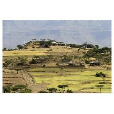 Poster Print Wall Art entitled Farm fields and a house
