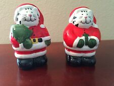 Christmas Cat Ceramic Salt and Pepper Shakers