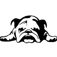 Car Sticker Car Decal Pug Graphics Stickers Body Decals Truck Parts