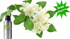 PURE JASMINE SAMBAC ESSENTIAL OIL Jasmine Sambac NATURAL ESSENTIAL OIL UNDILUTED