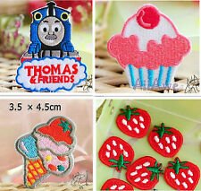THOMAS FLOWER STRAWBERRY EMBROIDERED  FABRIC IRON ON APPLIQUE PATCH BADGE T1