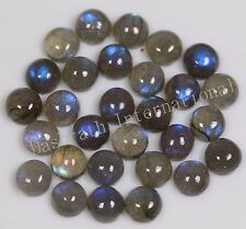 4mm to 18mm Natural Labradorite Cabochon Round Calibrated Size Loose Gemstone