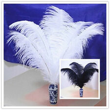 Wholesale! Beautiful Natural OSTRICH FEATHERS 《8-10 inch/20-25 cm》10-200pcs
