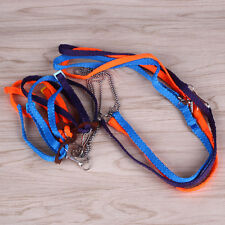 Small Animal Reptile Lizard Pet Harness Leash Rope Strap for Outdoor Walk