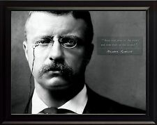 """Theodore """"Teddy"""" Roosevelt Photo Picture Framed - Inspirational Quote Vintage"""