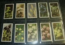 Brooke Bond Wild Flowers Series1 Nos 31-50 - Choose From Selection