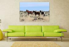 Stunning Poster Wall Art Decor Horses Wild Horses Mustangs 36x24 Inches