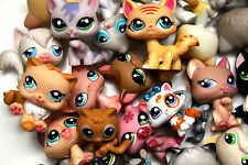 LPS LITTLEST PET SHOP CATS, KITTENS & LIONS -  LOTS TO CHOOSE FROM