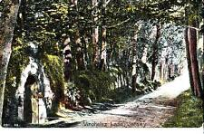 A85.Vintage Postcard. Vinchelez Lane, Jersey. Channel Islands