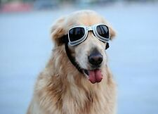 PETLESO Large Dog Goggles Sunglasses UV Goggles Goggles Golden Retriever Goggles