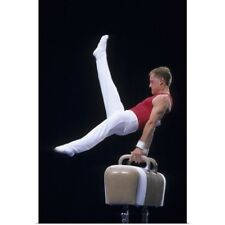 Poster Print Wall Art entitled Male gymnast performing on the pommel horse