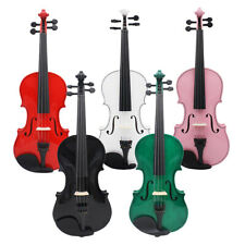 Basswood 4/4 Violin Fiddle with Carry Case+Bow+Rosin Musical Instrument