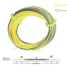 Aventik Touch Double Taper Long Taped Delicate Presentation Fly Floating Line