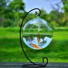 Aquarium Fish Tank Decoration For Your Table Clear Round Shape Hanging Glass