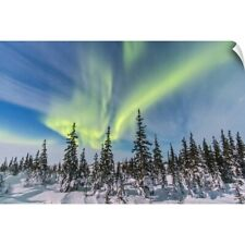 Wall Decal entitled Aurora borealis over the trees in Churchill, Manitoba,
