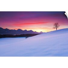 Wall Decal entitled Oak tree and snow-covered landscape in the Allgau Alps,