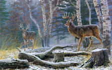 Art Wall Picture Animal Autumn White-tailed Deer Print Oil painting Canvas Decor