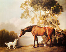 BAY HORSE AND WHITE DOG FRIENDS PAINTING BY GEORGE STUBBS REPRO