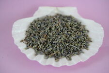 *VERY FRAGRANT* BULK Dried French LAVENDER Flower Buds Blossom New FREE SHIPPING