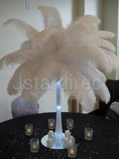 100 PCS WHITE OSTRICH FEATHERS 25-60 CM 10-24 INCH LONG USA SHIP WITHIN 24 HOURS