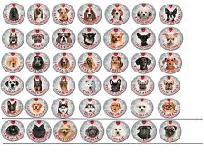 """Dog Decals Reflective Stickers 3""""- 48 Breeds Available"""