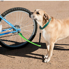 Woof Cycle Bike Trotter