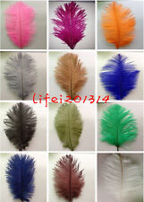 Wholesale 10/20/50/100pcs ostrich feathers 15-20cm / 6-8inches