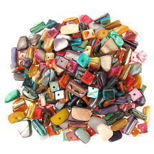 180g Mixed Dyed Shell Charm Beads - Square & Irregular Nugget Chips Craft Bundle