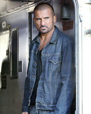 DOMINIC PURCELL PRISON BREAK PHOTO OR POSTER