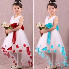 Baby Girls Kid Flower Petals Party Wedding Bridesmaid Christmas Fancy Dress 2-7Y