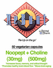 Noopept capsules 30mg w/ 500mg Choline 99%+ pure Nootropics Study Focus Memory