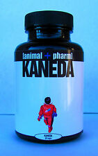 KANEDA Noopept/ALCAR/Choline/NALT/Polyrhachis/MORE capsules 99%+ pure Nootropic