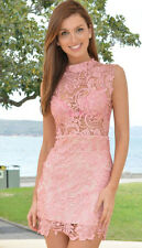 Stunning pink lace dress with SHEER BODICE BNWT Perfect cocktail party dress