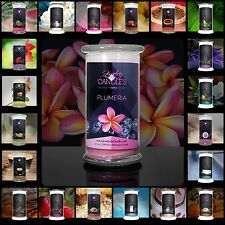Jewelry In Candles Choice of 21oz. Candle or Wax Tart with Hidden Jewelry inside