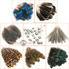 20-50pcs Wholesale Beautiful Natural Pheasant Feathers Assorted DIY Crafts Decor