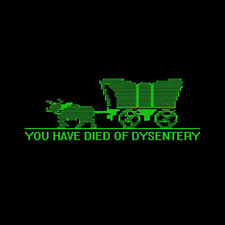Retro YOU HAVE DIED OF DYSENTERY Shirt, Toddler & Kids Sizes, Oregon Trail Game