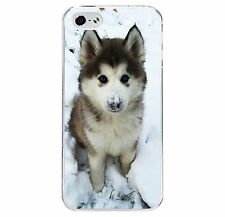 Cute Husky Puppy Phone Case Hard Cover (Fits Iphone 4 4s 5c 5 5s 6 6+) Dog