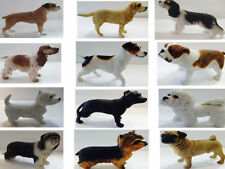 Best of Breed Dog Studies Standing - 33 Various Designs By Leonardo Collection