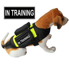 IN TRAINING SERVICE DOG Vest Harness w/ POCKETS & Side Bags free label Patches