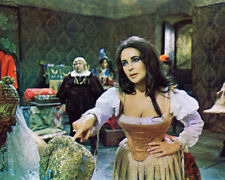 ELIZABETH TAYLOR TAMING OF THE SHREW BUSTY PHOTO OR POSTER
