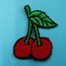 Apple Fruit Food Iron on Sew Patch Cute Applique Badge Embroidered Nature Green
