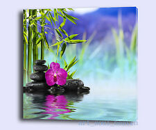 Oil Painting HD Print Wall Decor Art on Canvas,Orchid Stones Water (Unframed)