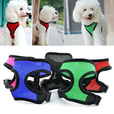 Pet Cat Puppy Dog Harness Soft Mesh Vest Collar Leash Strap Eager Nobby